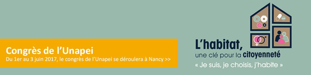BandeauUnapei0317